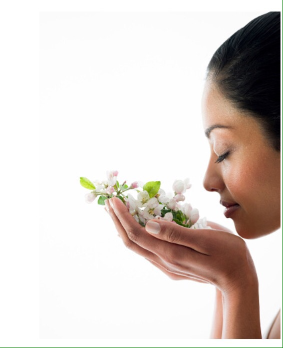 Which Aromas are Best for Vata?
