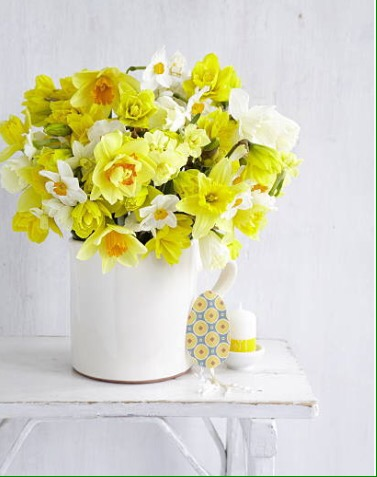Add Beautiful Spring Flowers to Your Home