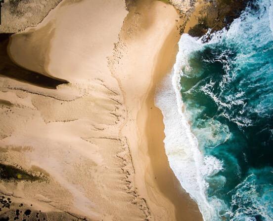 Oz's Freshwater Beach