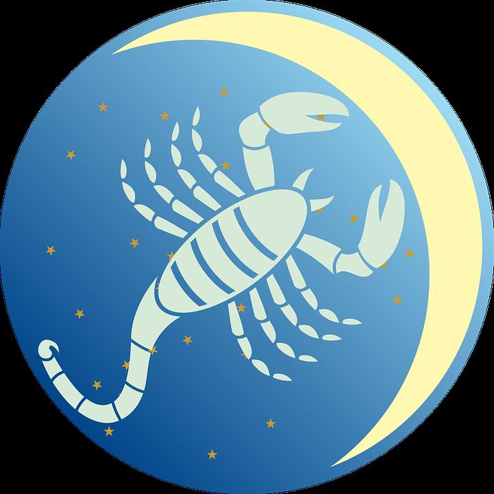Scorpio Regeneration