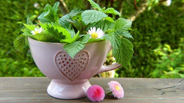 Happy Herbal Tea