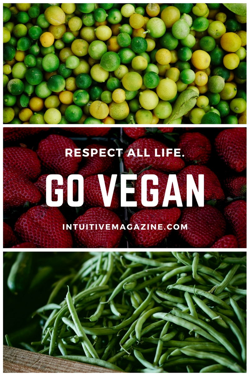 Go Vegan: Plant-Based Diet