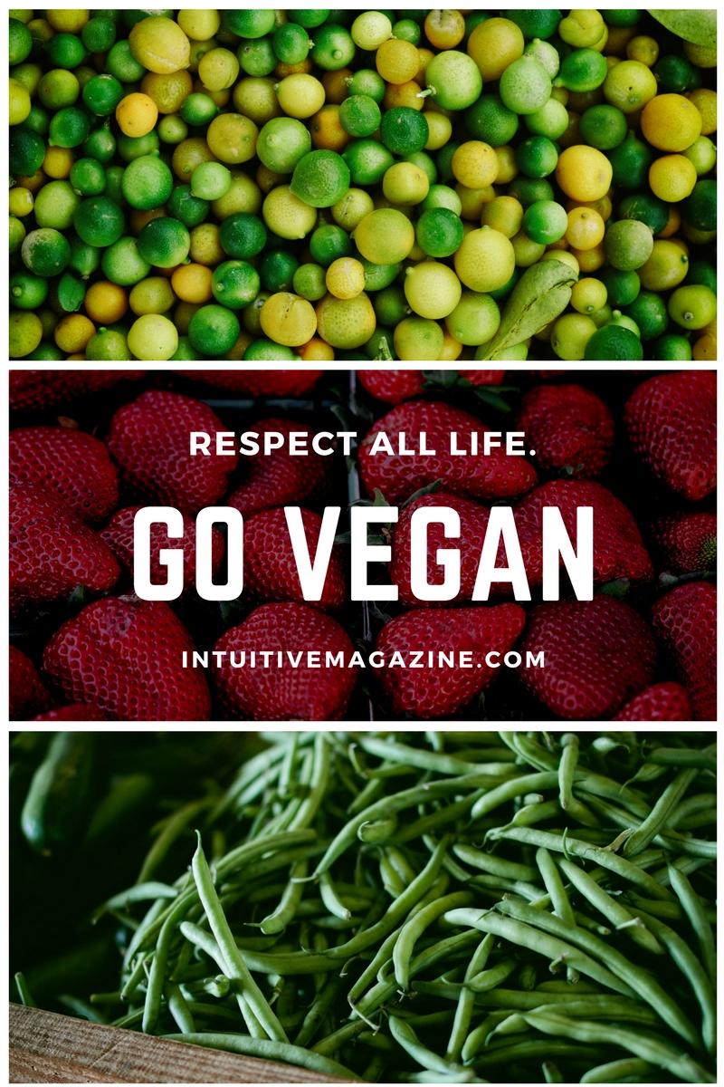 veganebook