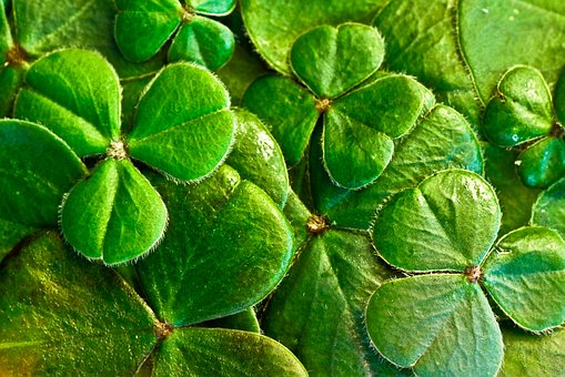 Lucky St. Patrick's Day NEW MOON